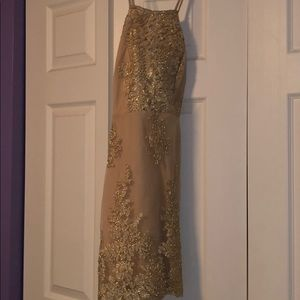 Windsor Dresses - Gold and Nude fitted cross back dress.